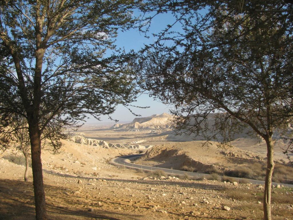 נוף נחל צין המשתקף מן השביל המיוחד למבקרים באחוזת הקבר     יהודית גרינקול