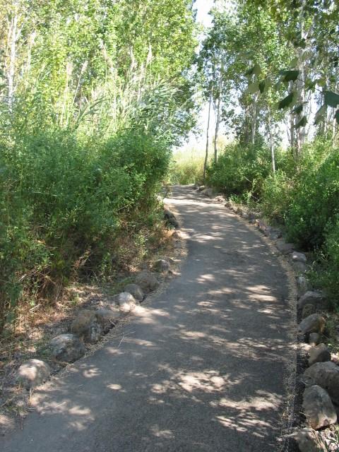פארק שניר1